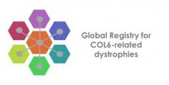 uncategorized-Global Registry for COL6 logo
