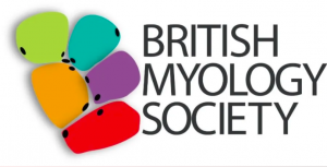 British Myology Society Annual Meeting 2021 – Save the date